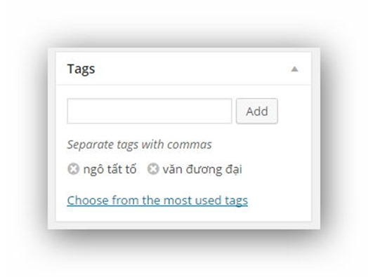 them-tag-post-wordpress